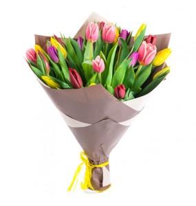 Happy Tulipan