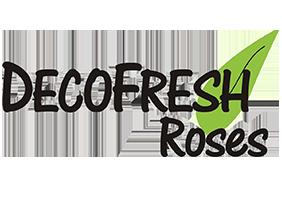 Deco Fresh Roses